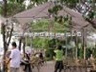 园林自动喷灌装置