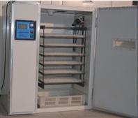 供应山东省专业的鸽子孵化机