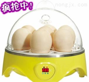 价格适中的鸽子孵化机【厂家直销