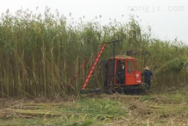 奇瑞谷王4LZ-2.5Q 型全喂入水稻聯合收割機