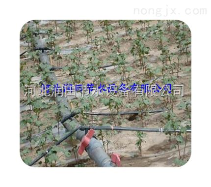 陕西地区温室大棚滴灌设备滴灌滴箭
