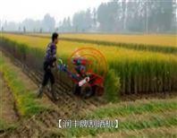 牧草收获机 牧草割晒机图片