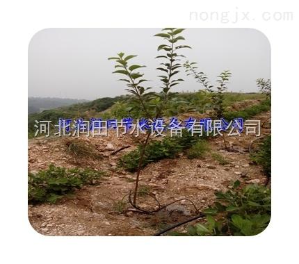 农林果园果树可调式管上滴头