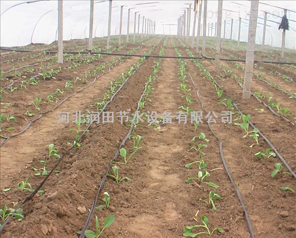 河南农用滴灌带