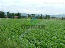 农业喷灌系统