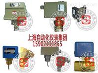 NS-P2压力开关品牌-上海远东仪表厂