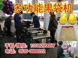 福建漳州平和蜜柚果袋机告诉生产节省人工的果袋机设备,凯祥牌全自动蜜柚袋制袋机