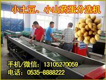 多功能高效土豆选果机,内蒙古智能土豆分级机