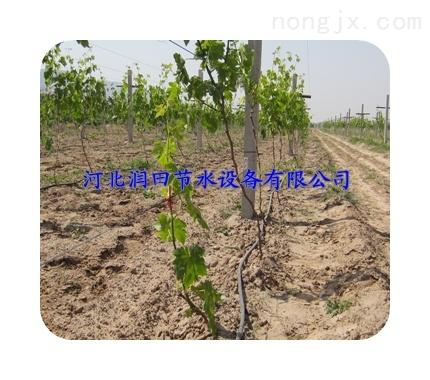 防堵优质滴灌管|邯郸磁县批发网式过滤器设备