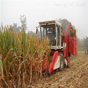 大型玉米秸秆收割机图片