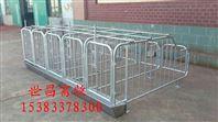 育肥栏厂家批发泊头供应养猪设备定位栏