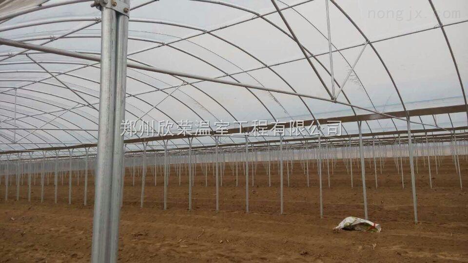 黄山简易连体大棚建造专家温室大棚建造基地