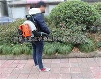 武汉两冲程吹雪机 专业的吹雪机