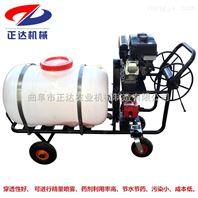 小型汽油打药机 农田喷雾器 拉管式高压喷雾机
