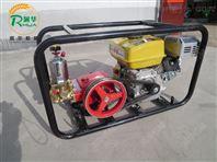 自走式喷雾器 新款高压喷雾器 打药喷雾器价格