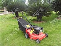 汽油草坪修剪机 新款草坪机价格 草坪机厂家直销