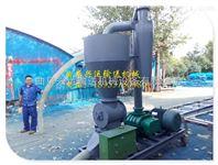 QL-5气力式移动送料机 可弯曲软管真空吸粮机