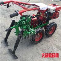 全自动挖蒜机器 柴油大蒜收获机哪里有卖