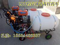 园林专用汽油大容量喷雾器 自走式手推式打药车厂家