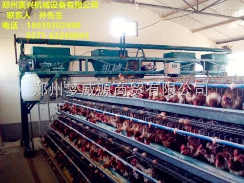 供应富兴小型全自动喂料机 蛋鸡自动喂料机价格 可消毒全自动喂料机批发厂家