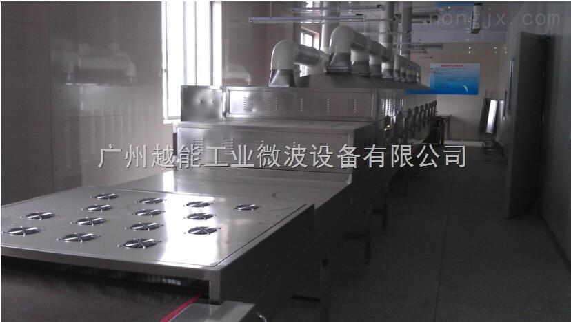 芒果干烘干机 芒果干微波烘干机