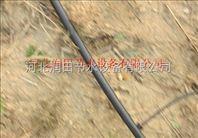 溆浦县滴水毛管铺设使用 湖南小管出流系统装置安装