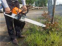 断根挖树机规格 苗圃断根挖树机厂家