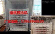 KX-3YL樱桃预冷机-樱桃预冷设备
