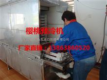 KX-3YL樱桃预冷机-预冷樱桃的机器