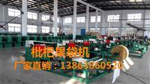 GDJ-D-P1枇杷果袋机厂家