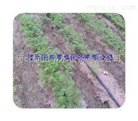 四川精品节水滴灌带 泸县滴管带市场价