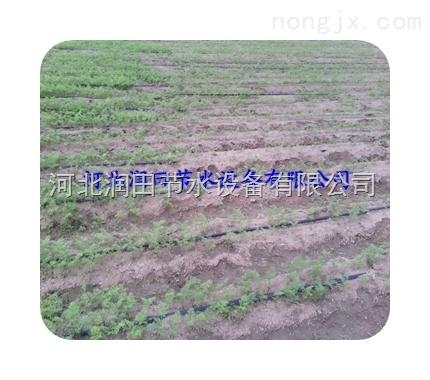 网式过滤器设备-山西神池县滴水带出售