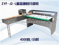 深圳振野4000枚小型自动鸡蛋皮蛋喷码分级机
