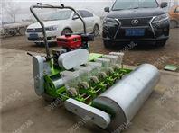 种植蔬菜播种机报价 不同规格手推式小颗粒播种机