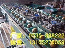 XGJ-MHT四川红阳猕猴桃选果机 不伤果红阳猕猴桃选果机分选猕猴桃好机器