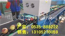 XGJ-DN辽宁苹果智能选果机 高效快速分选苹果机器 鸡冠苹果分选机