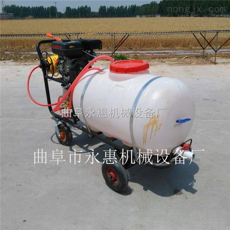 厂家直供农用喷雾机械 手推式机动喷雾打药机