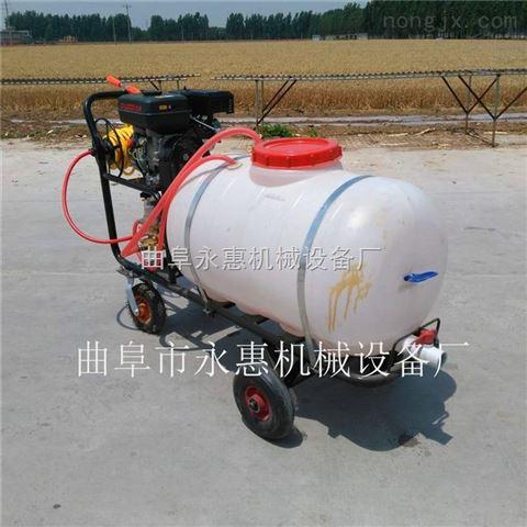 高壓手推式消毒車 園林機械高壓噴霧機廠家直銷