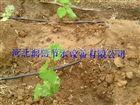 齐全可定制山西滴灌管长期供应 垣曲县花卉滴灌适用