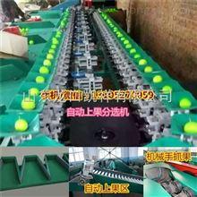 XGJ-QZ中国台湾福建青枣分选机 毛叶枣选果机 中国台湾青枣分选大小机器