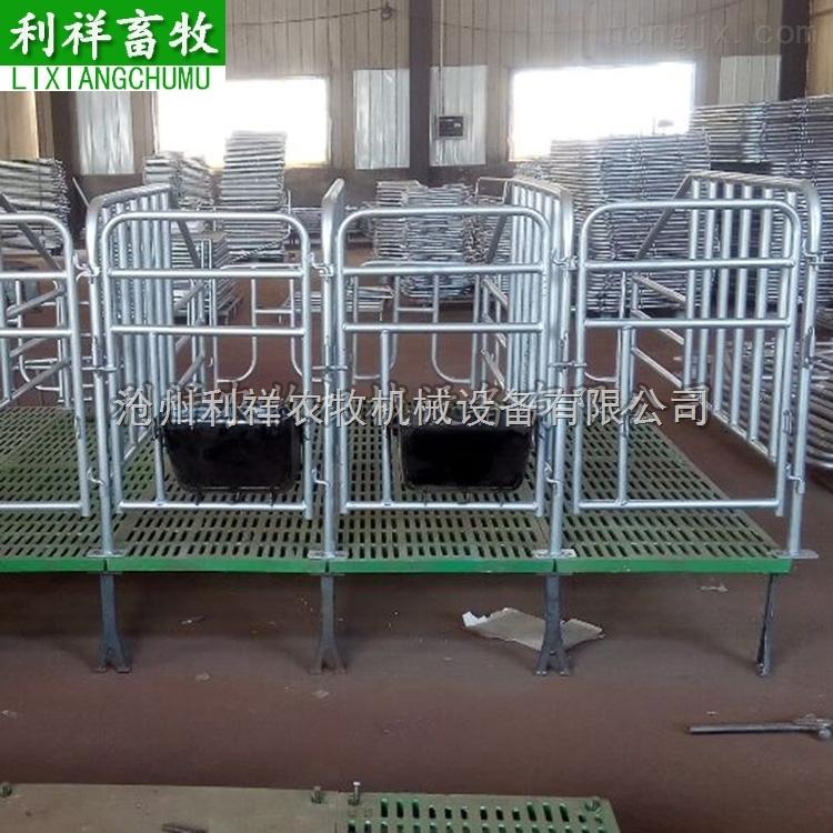 带复合漏粪板定位栏 母猪单体栏 正规厂家 利祥制造