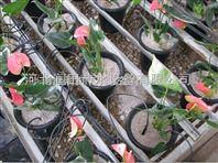 山东大棚花卉滴灌 黑色塑料滴箭 滴灌PE管道