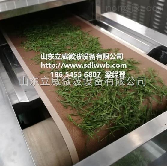 立威中小型微波金银花中药材干燥机