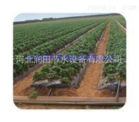 农业PE滴灌带|甘肃农田滴水带
