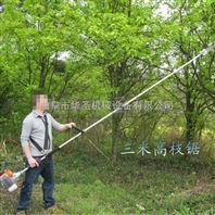 长枝油锯批发 枯树修剪高枝锯