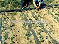 河南省滴灌带设计 水肥一体化 过滤器热点