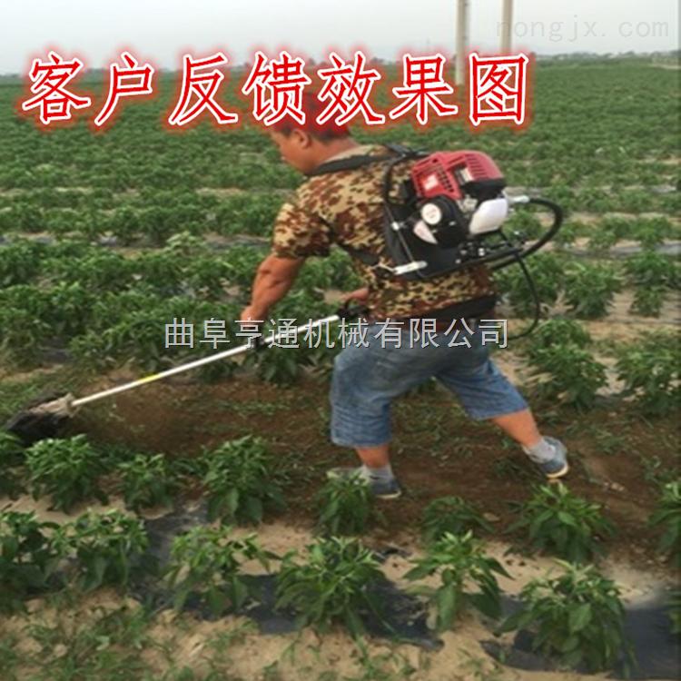 小型農用背負式除草機 牧場除草割草機廠家