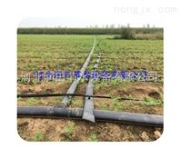 溆浦县滴水带销量高 湖南滴灌带深受客户欢迎