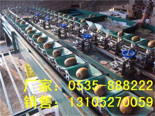 XGJ-MHT-供应高效智能猕猴桃选果机