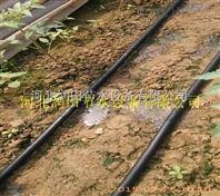 棉花滴灌带 河北大田农作物滴灌ca88亚洲城娱乐